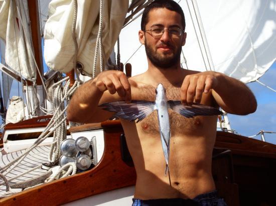 Alban et le 1er poisson volant