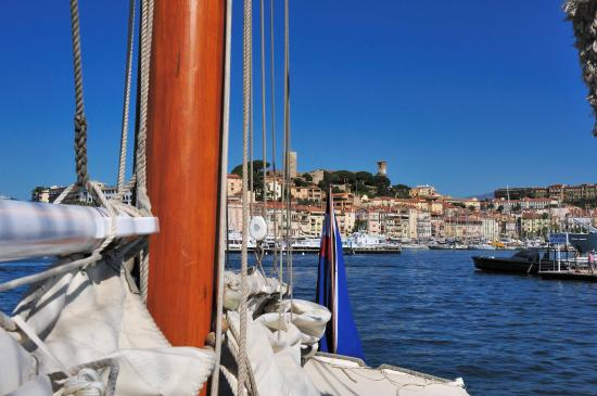 Out of Cannes