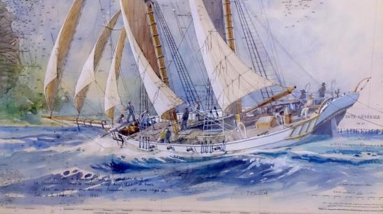 Toulonnaise 3 (1)